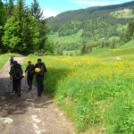 Mission accomplished The trek out through apline meadows Mont_blanc Camo